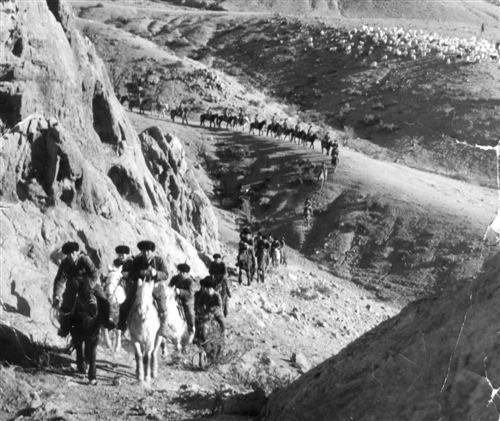 在长征路上,在抗日战场,在解放战争的烽火硝烟中,一匹匹军马和它们的主人冲锋陷阵 生死相依,立下赫赫战功 驰骋在新时代的 古老兵种献给八一建军节内蒙古日报数字报