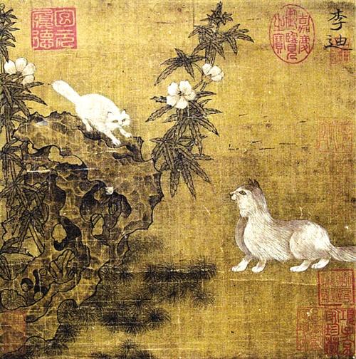 贵州明贵木材图片