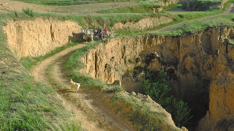 作的农民赶着驴车,走在崎岖的乡间小路上.